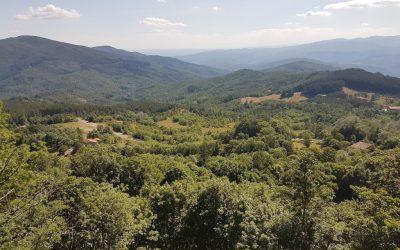 Monte e Fonte di San Vicinio